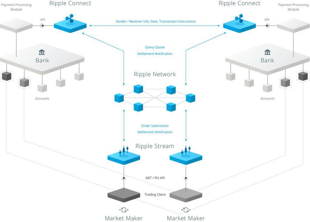 blockchain di ripple Bitnovo