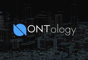 que es ontology Bitnovo
