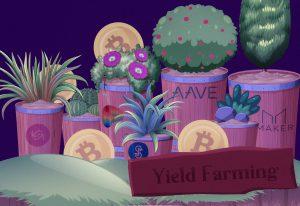 què es el yieald farming Bitnovo