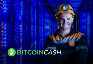 cómo minar bitcoin cash BCH Bitnovo