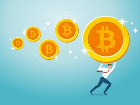 who has the most bitcoins Bitnovo